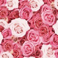 癒しのコルギサロン_薔薇